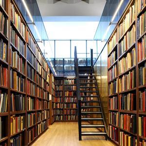 Библиотеки Дубровки
